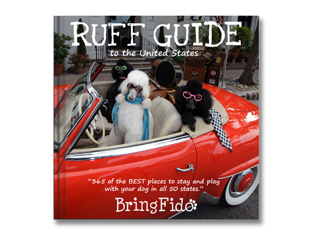 Ruff Guide to the United States's video poster