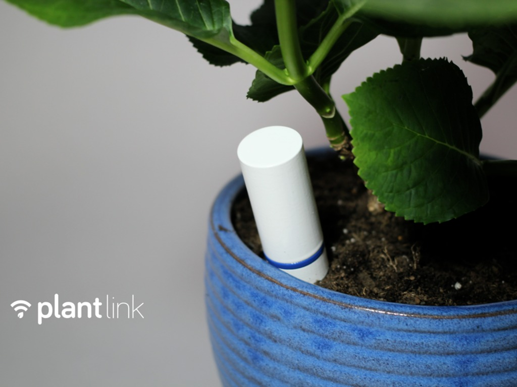 Plant Link: Listen to your plants's video poster