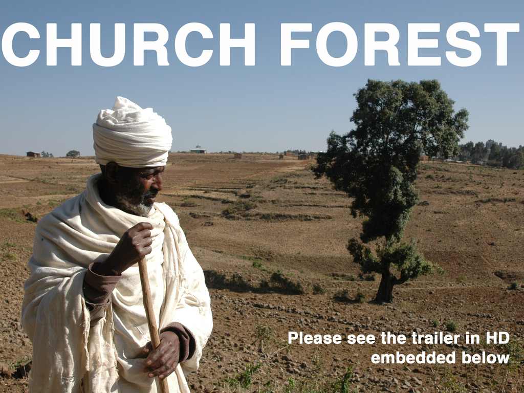 CHURCH FOREST: The Green Necklaces of Ethiopia's video poster