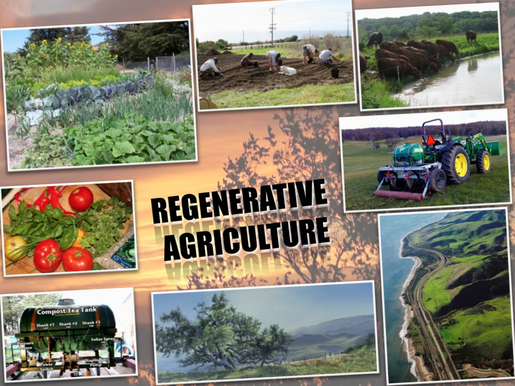 Living Web Films - Regenerative Agriculture's video poster