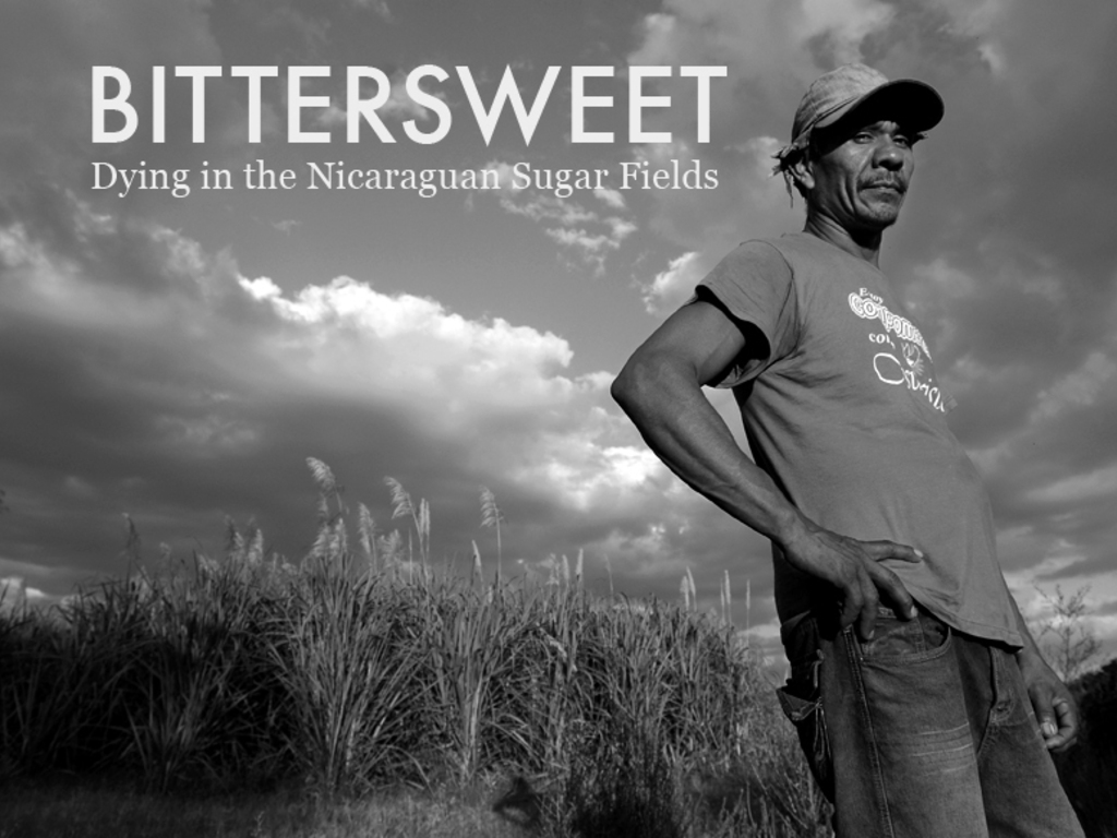 Bittersweet: Dying in the Nicaraguan Sugar Fields's video poster