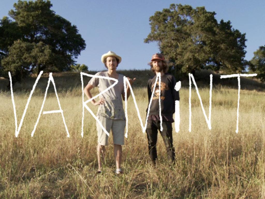 VARMiNT - a short film's video poster