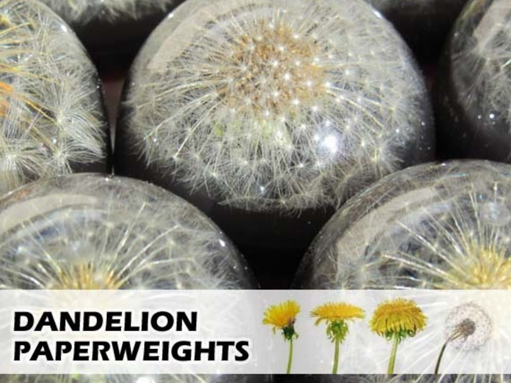 Dandelion Paperweights: Born From Weeds's video poster