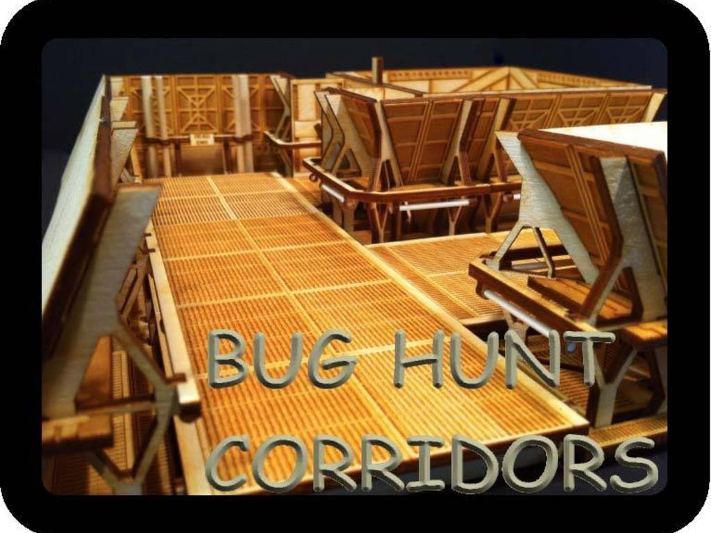 Bug Hunt Corridors's video poster