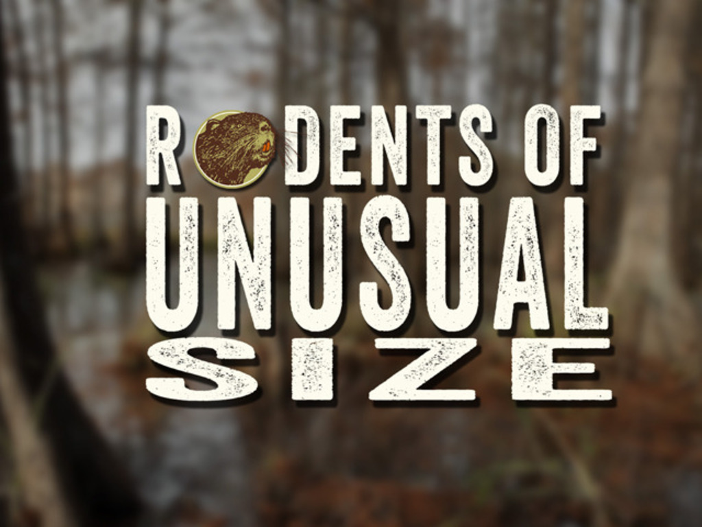 """""""Rodents of Unusual Size""""'s video poster"""