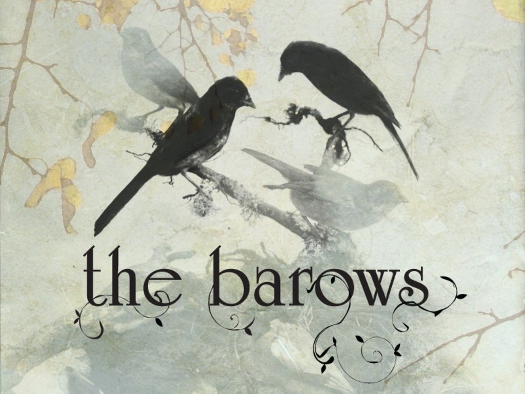 The Barows are recording an album!'s video poster
