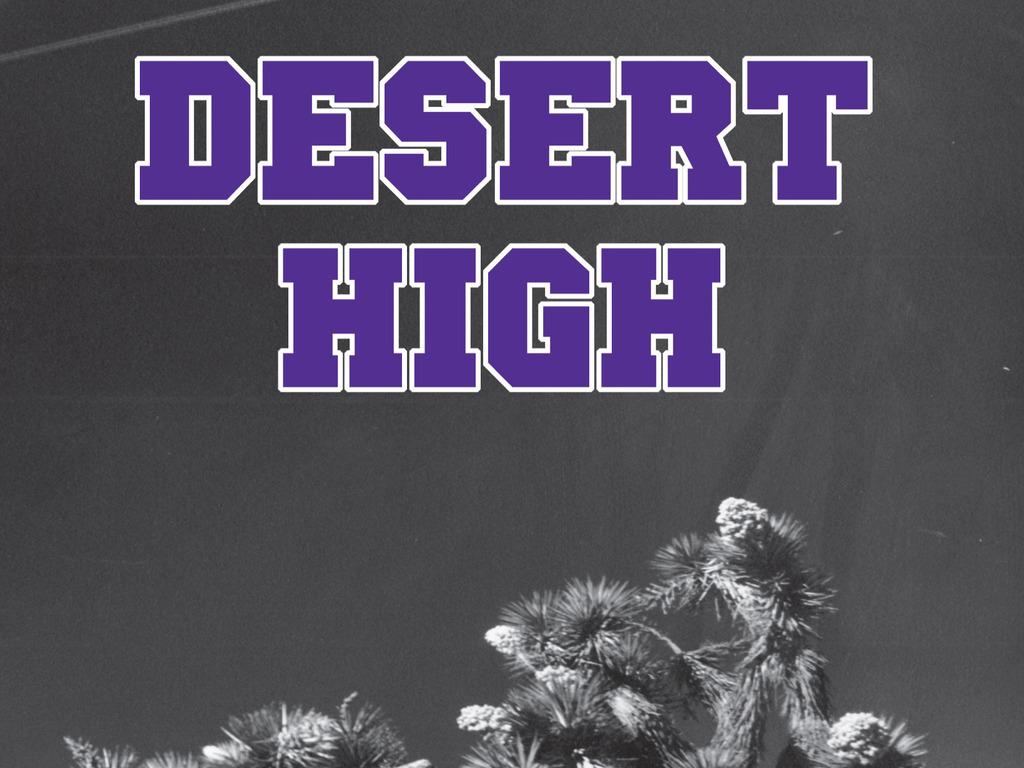 Desert High's video poster