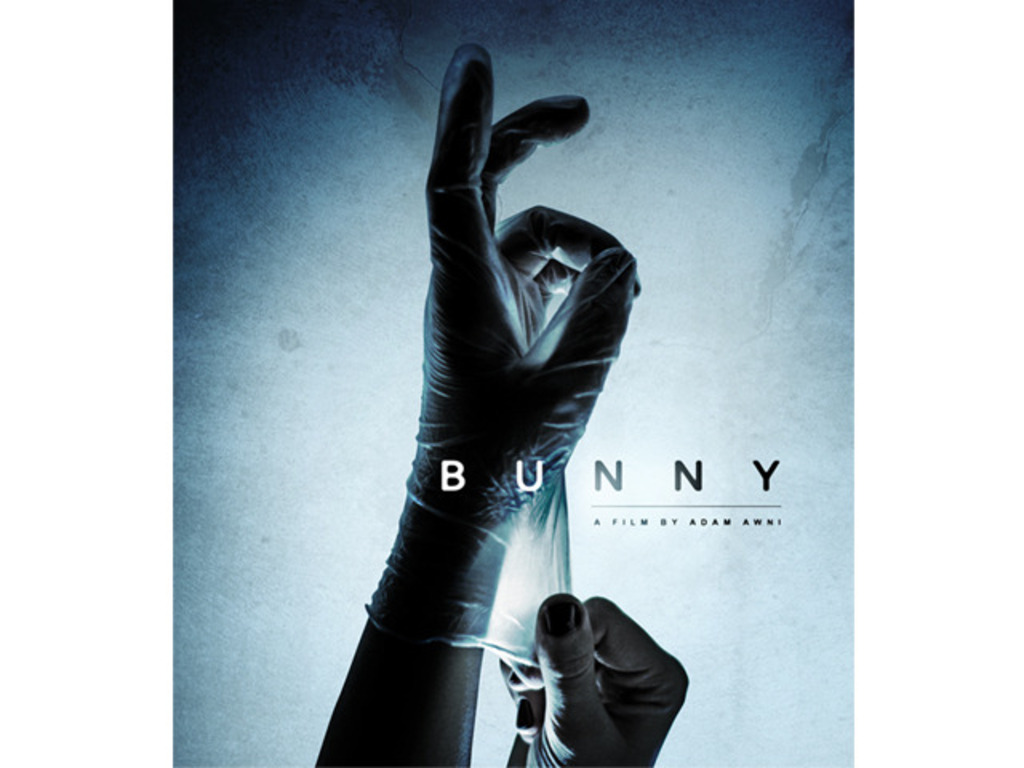Bunny's video poster