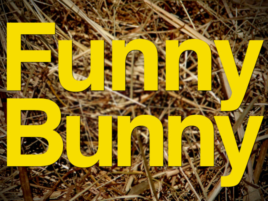 Funny Bunny – A new feature film by Alison Bagnall.'s video poster
