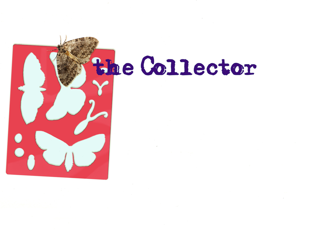 The Collector's video poster