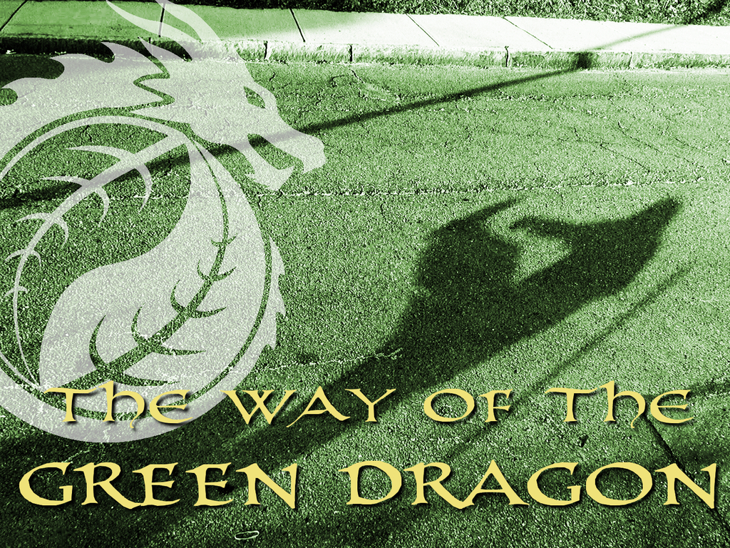 The Way of The Green Dragon: A Documentary's video poster