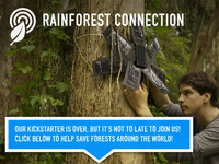 Rainforest Connection - Phones Turned to Forest Guardians