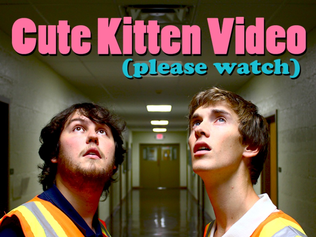Cute Kitten Video (please watch)'s video poster