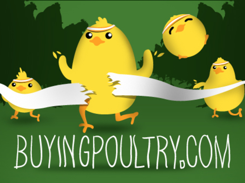 BuyingPoultry.com - Good food. Good farmers.'s video poster