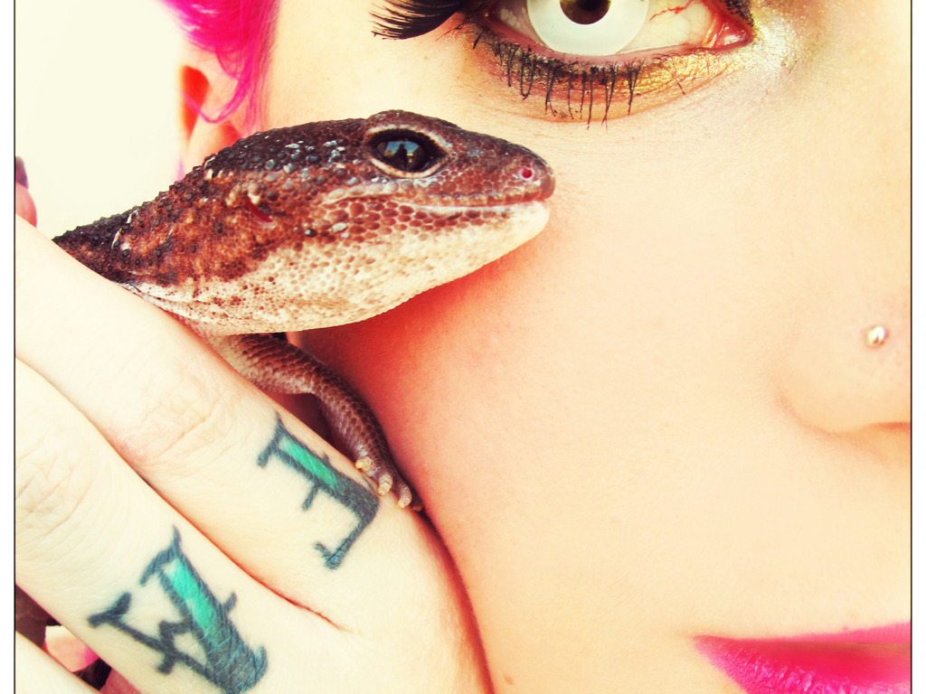Wild Things: Burlesque Beauties and the Pets They Love's video poster