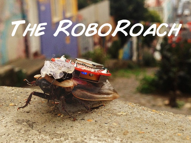 The RoboRoach Control a living insect from your smartphone by Backyard Brains Kickstarter