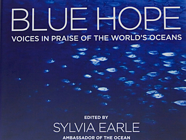 Blue Hope - An Ocean Book for the World