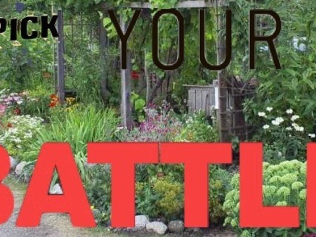 Pick Your Battle - (foraging as revolutionary self-help)'s video poster