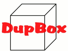 DupBox the simple answer to digitizing old images and paper