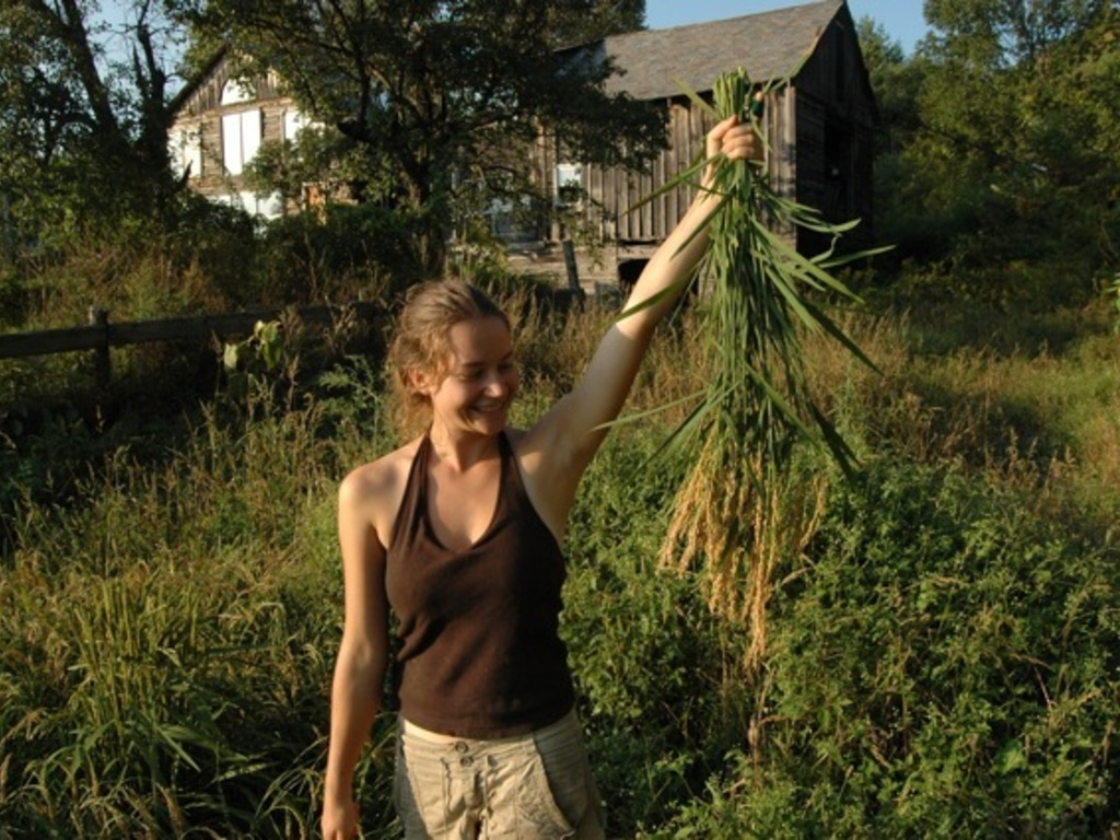 Growing Rice in Vermont's video poster