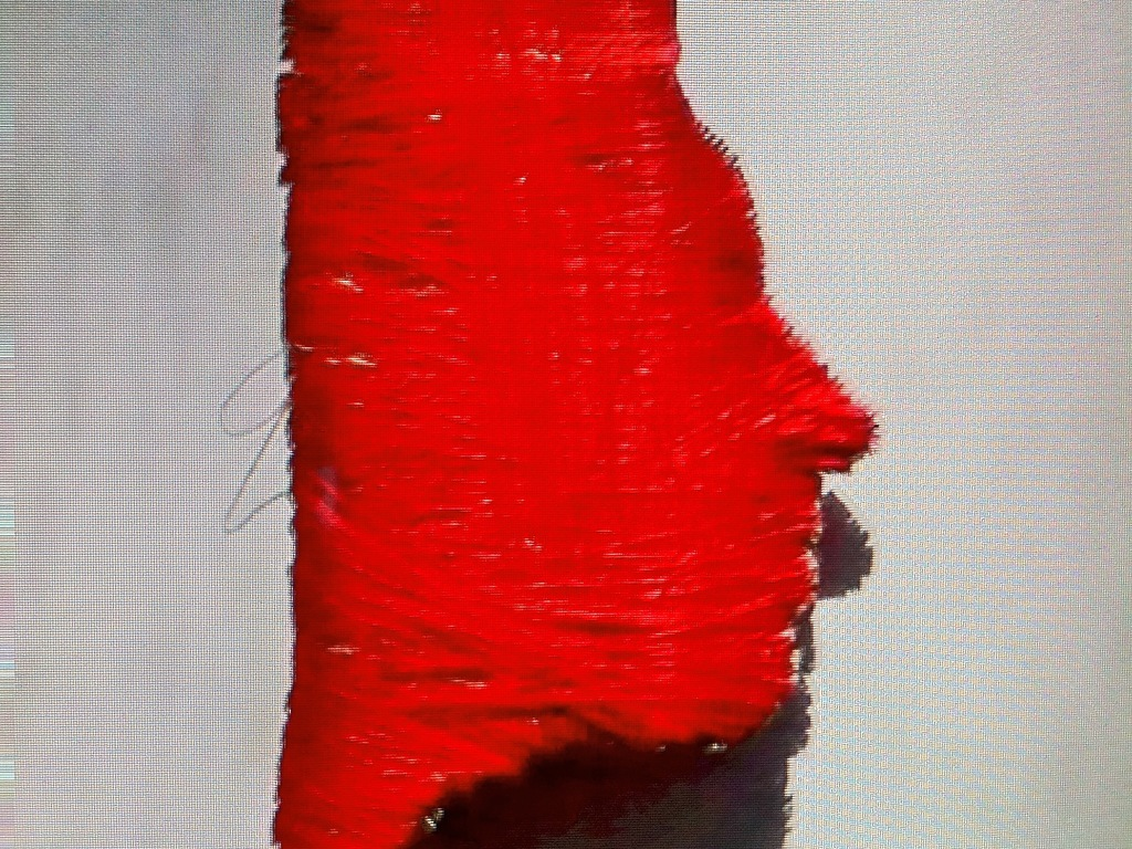 The Red Thread :: An Operatic Film Short's video poster