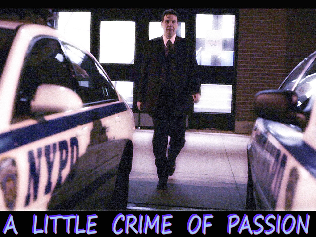 A Little Crime Of Passion's video poster
