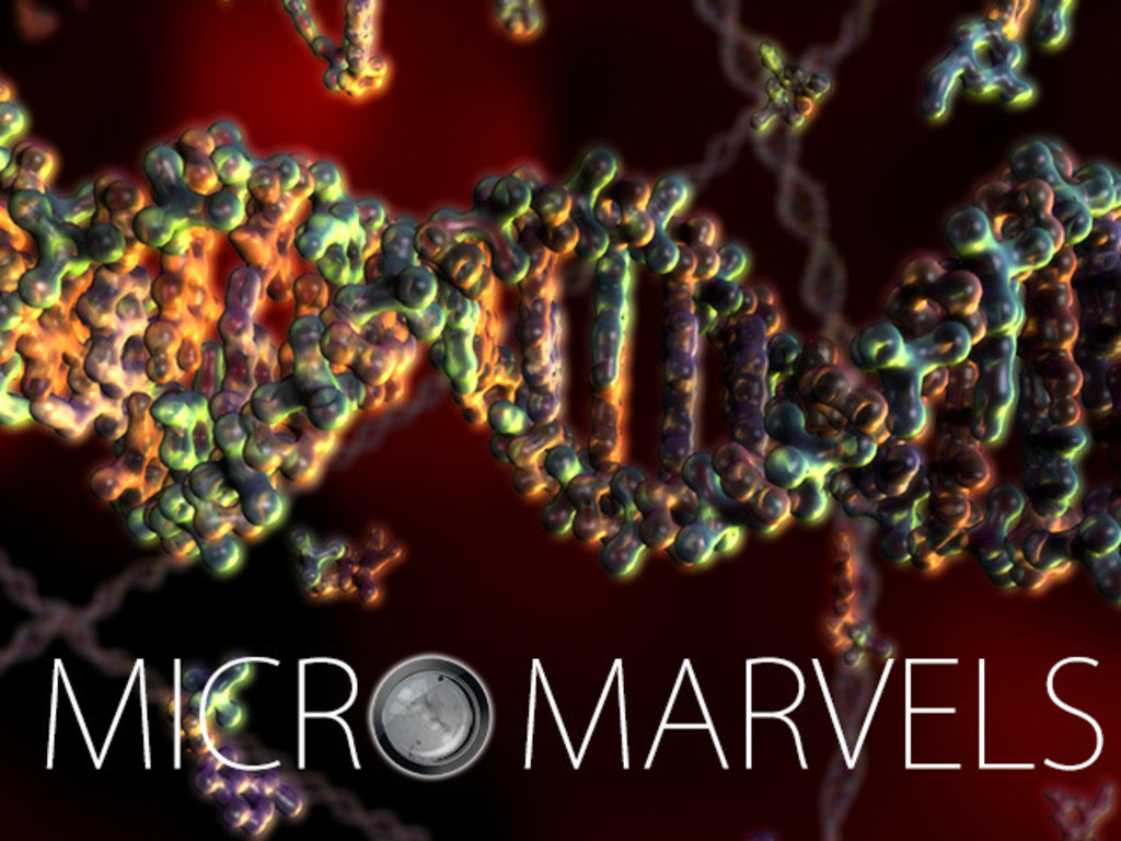Micro Marvels -Visualizing the amazing world of microbiology's video poster