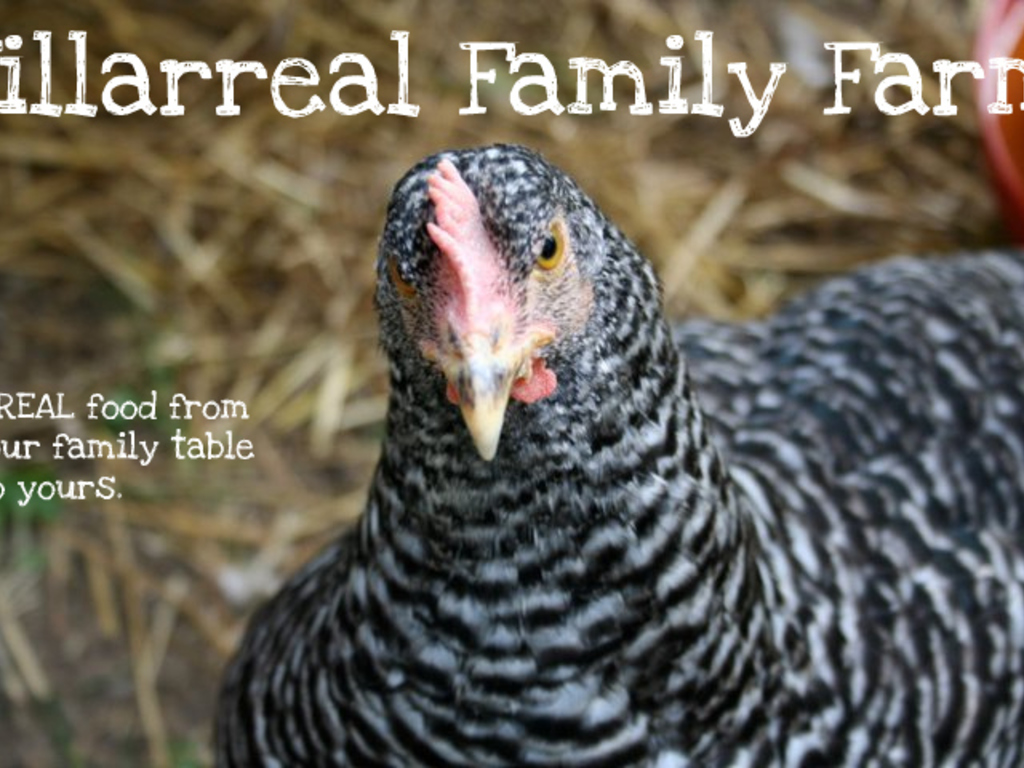 Villarreal Family Farm Expansion Project's video poster