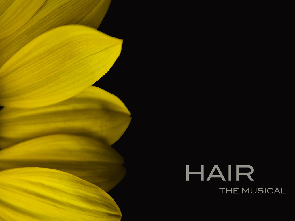 Hair: The Musical's video poster