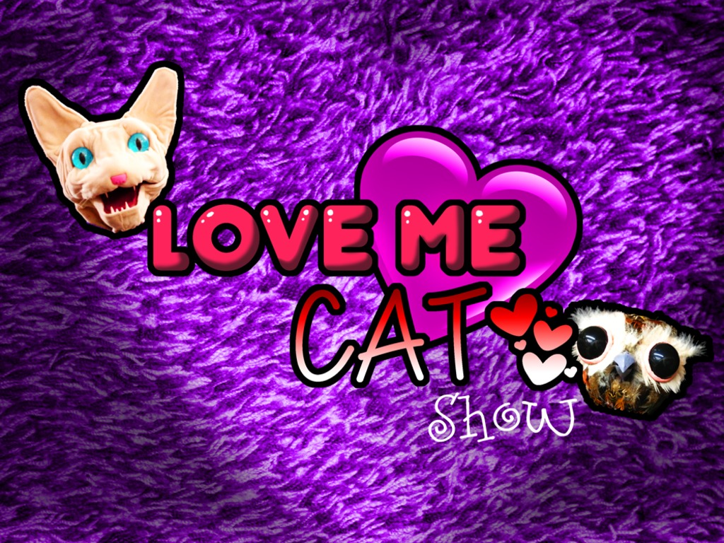 Love Me Cat: Puppet Talk Show with Celebrities & You!'s video poster