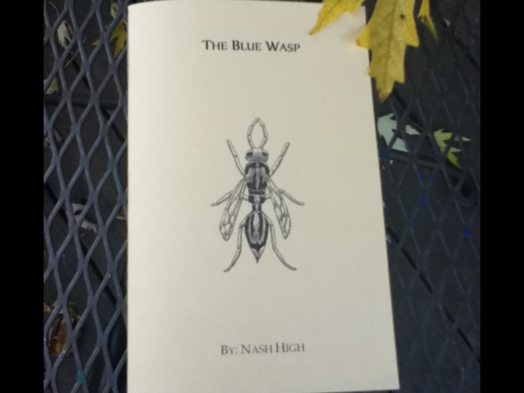 The Blue Wasp: A Hand-Published Ghost Story's video poster