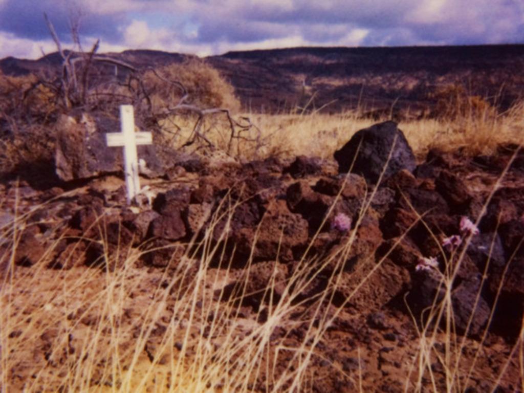 JARGON 114 - Roadside Memorial Polaroids's video poster