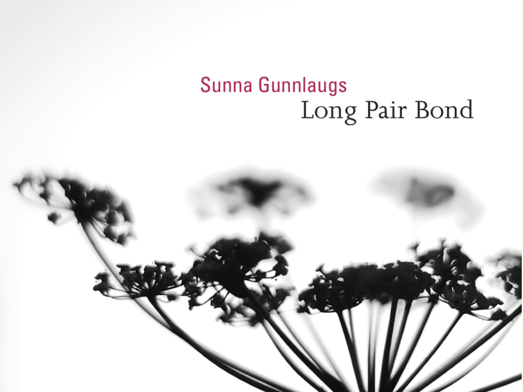 Long Pair Bond's video poster