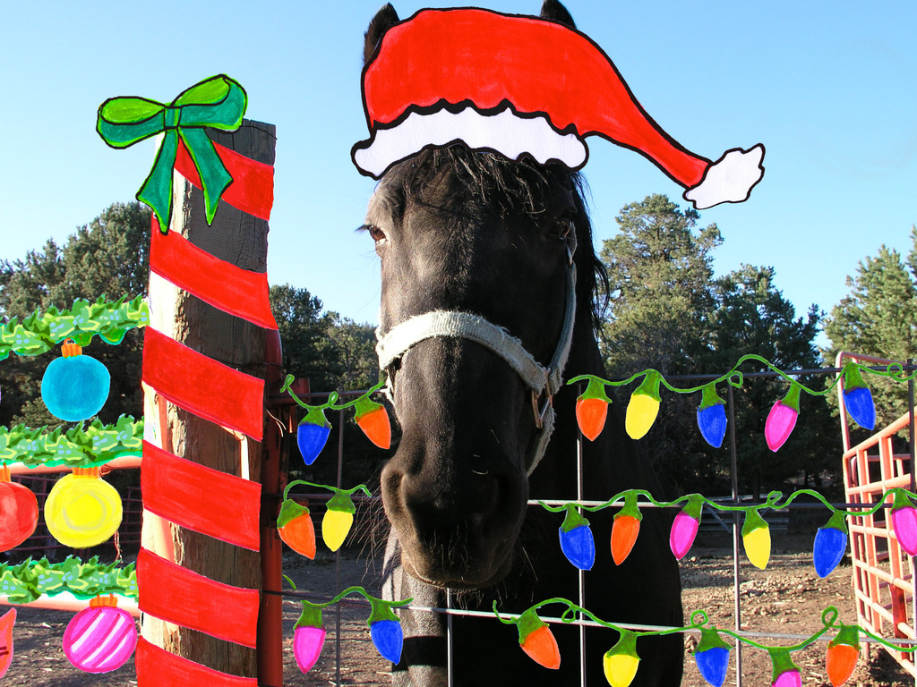 Horse for the Holidays's video poster