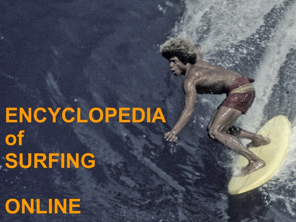 Encyclopedia of Surfing's video poster
