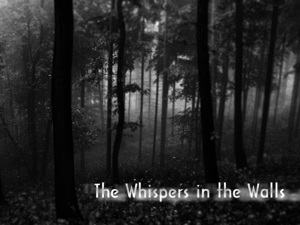 The Whispers in the Walls's video poster