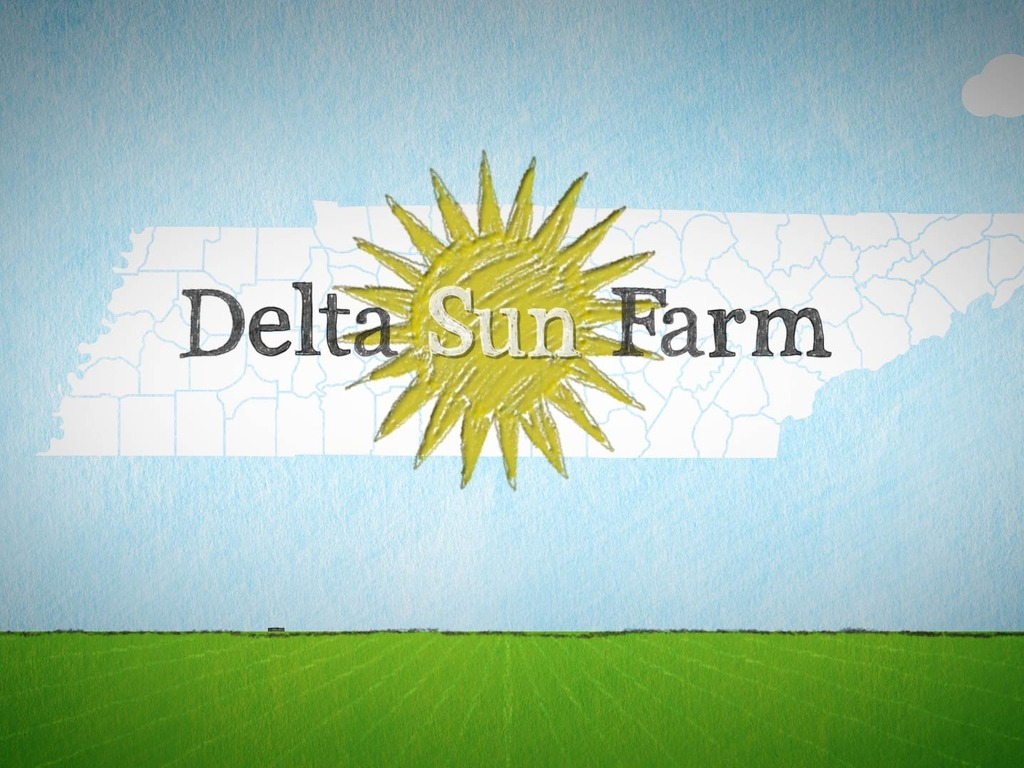 Delta Sun Farm CSA Program's video poster