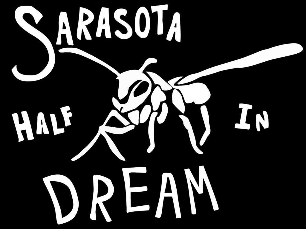 Sarasota Half in Dream's video poster