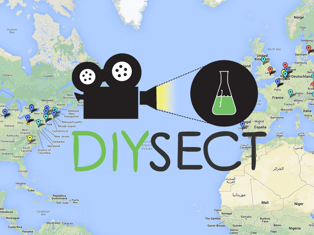 DIYsect: Filming Biotinkering for the Web's video poster