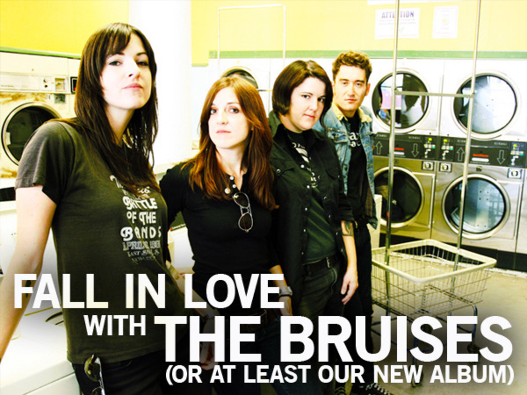 Fall In Love With the Bruises (or at least our new album)'s video poster