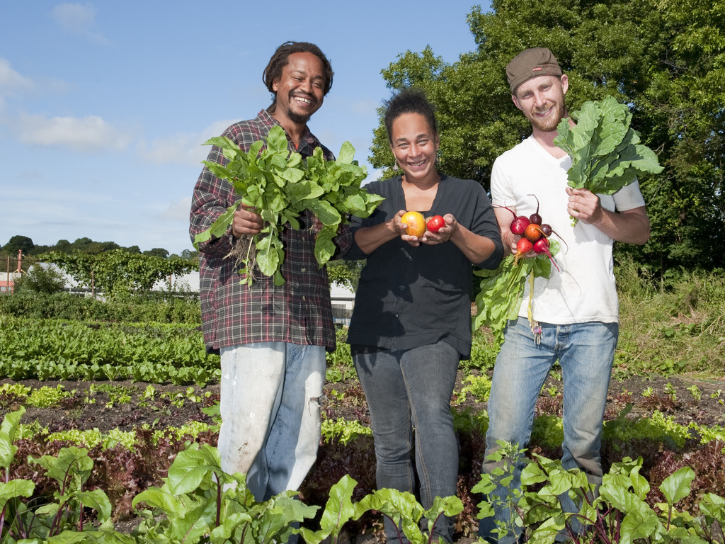 City Growers - Converting Urban Lots into Sustainable Farms's video poster
