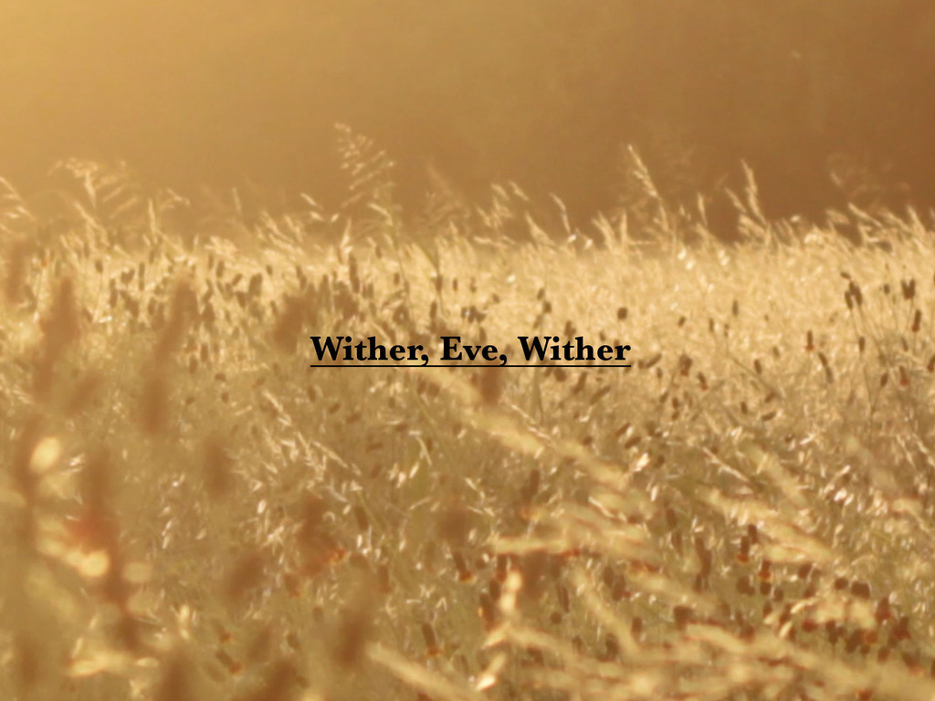 Wither, Eve, Wither's video poster