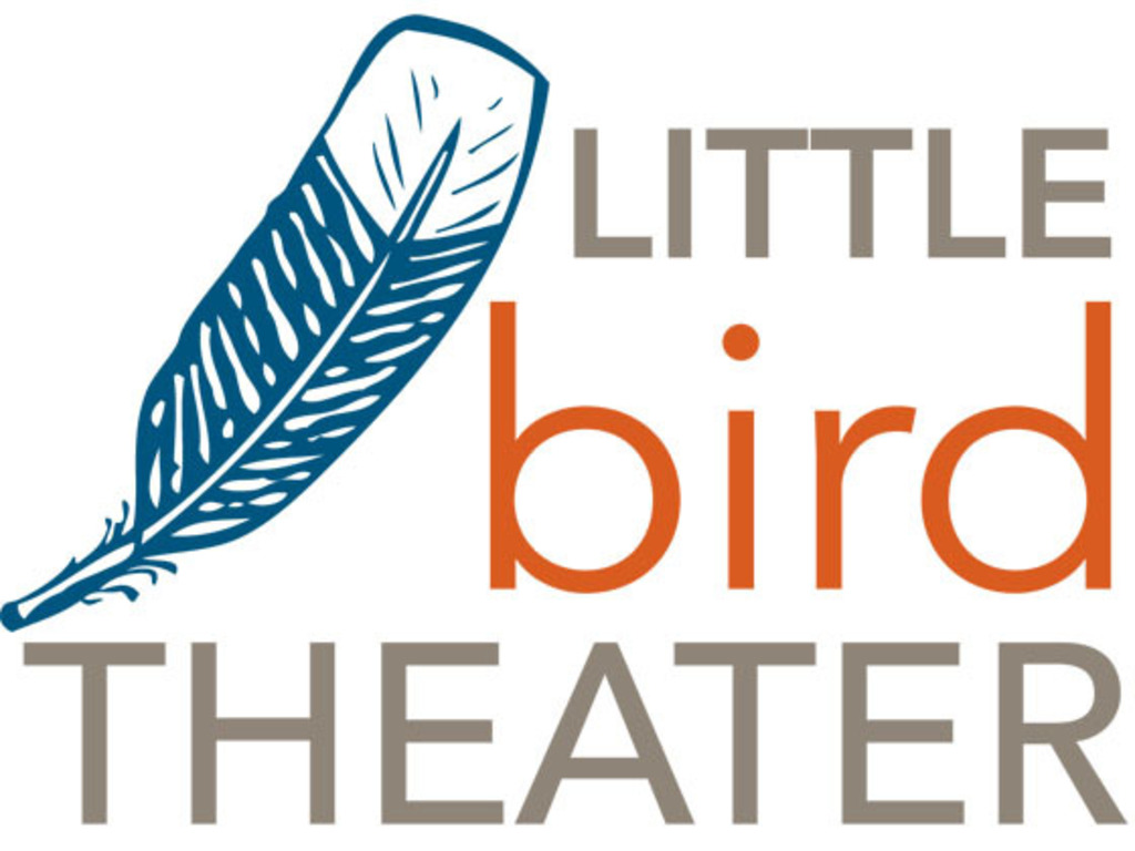 Let's Launch Little Bird Theater!'s video poster
