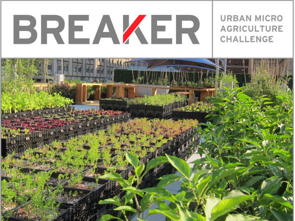 BREAKER: Urban Agriculture Challenge's video poster