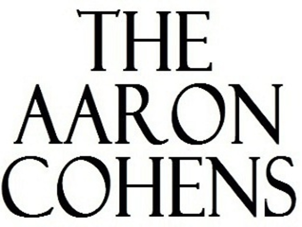 The Aaron Cohens's video poster