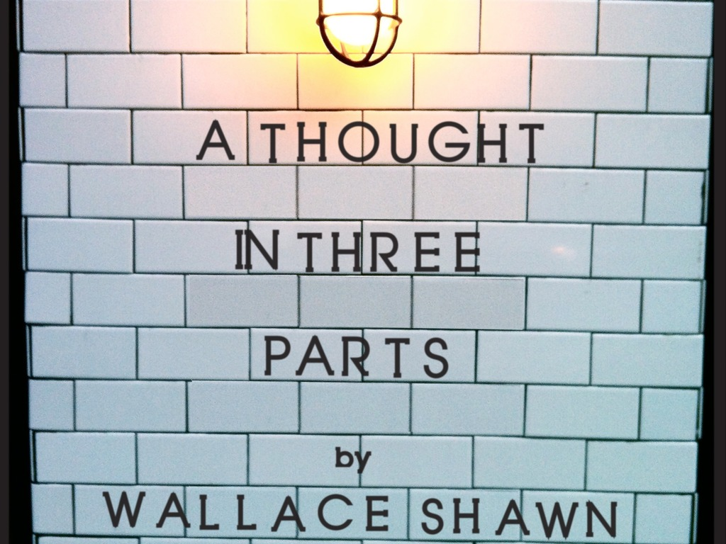 A Thought in Three Parts's video poster