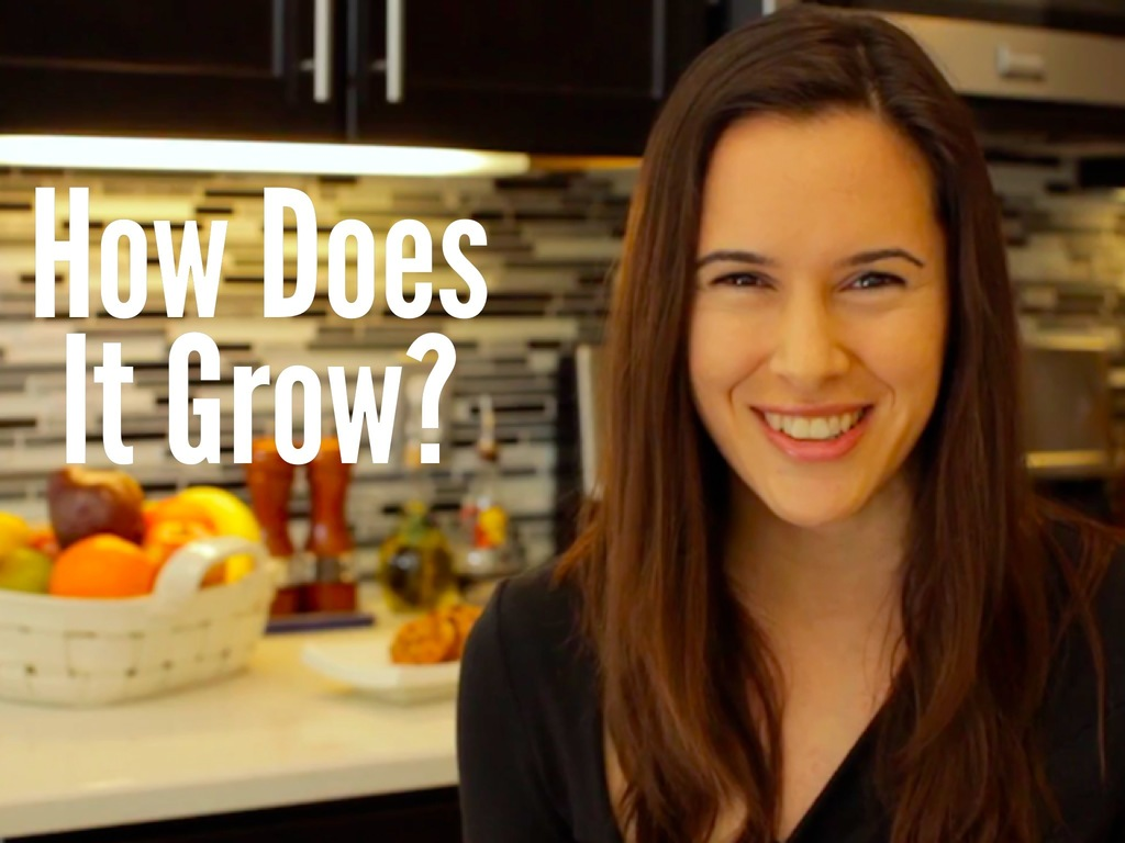 """""""How Does it Grow?"""" Video Series's video poster"""