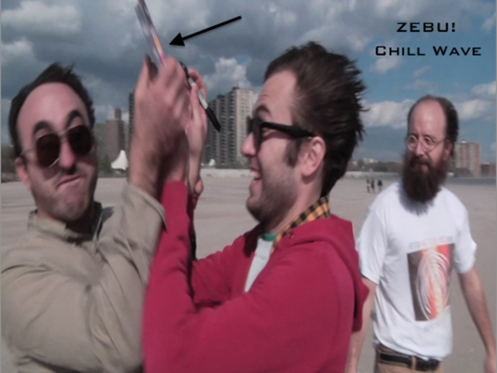 "ZEBU! ""Chill Wave"" Record Release's video poster"