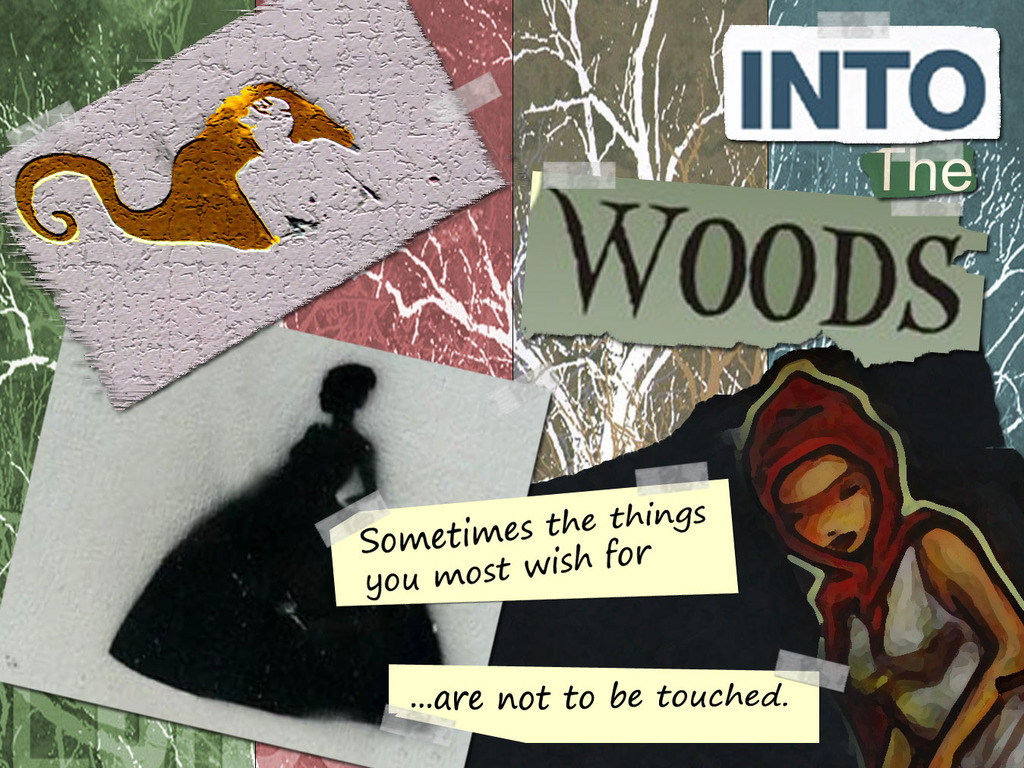 Into the Woods's video poster