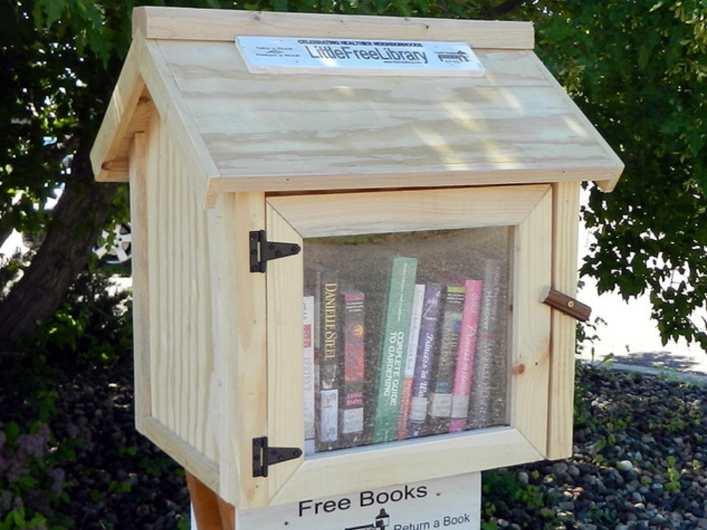 Little Free Library Project: Winston Salem, NC's video poster